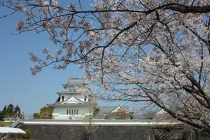 春の天ケ城は美しい^^